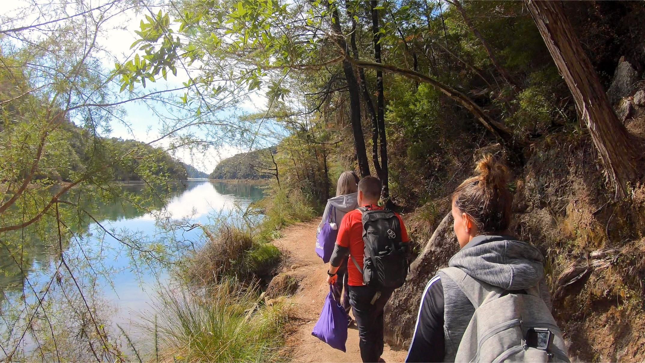 Bark Bay to Awaroa Great Walk
